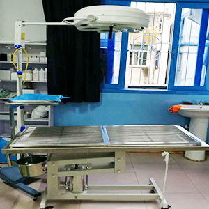 动物专用无影手术台
